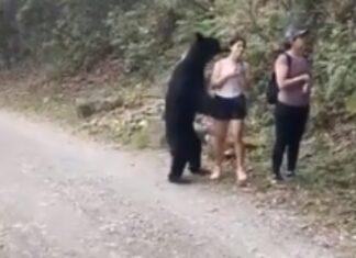 Turista tira selfie com urso numa trilha de um parque no México
