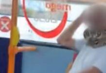 Homem viaja de autocarro com uma cobra a servir de máscara