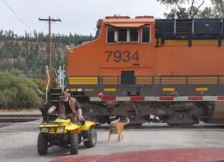Homem de moto 4 passa a centímetros de comboio com o seu cão