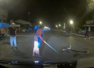 Gatinho é atacado por uma cobra no meio da rua e é salvo por populares