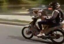 Cão conduz mota a alta velocidade