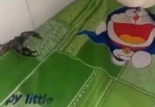 Mãe descobre grande escorpião na cama do filho