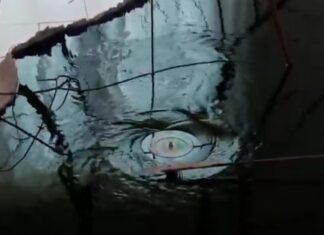 Museu de Arte Moderna tem um gira-discos que toca vinil debaixo de água