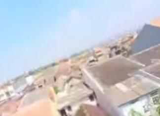 Papagaio agarra GoPro e faz um vídeo a sobrevoar a cidade